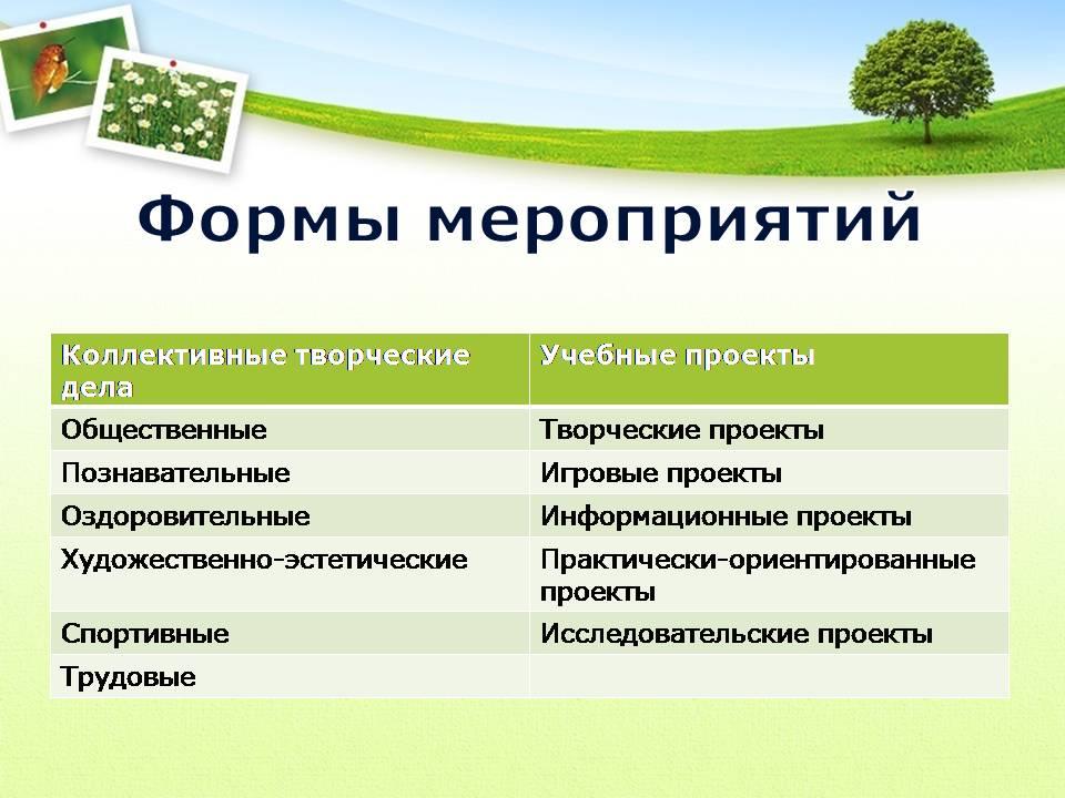 педагогические проекты воспитательная работа в школе: